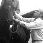 Frank Calvarese assisting Ruffian