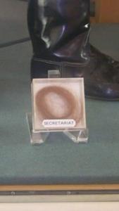 Secretariat's mane