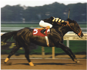 Angel and Seattle Slew become one