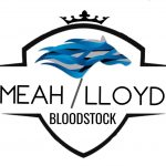 "alt=""Bloodstock agent logo Meah/LLoyd"""