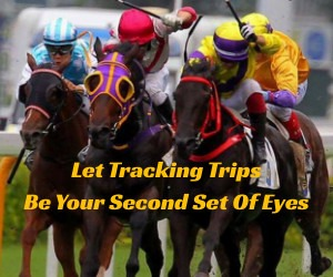 Tracking Trips (ad)