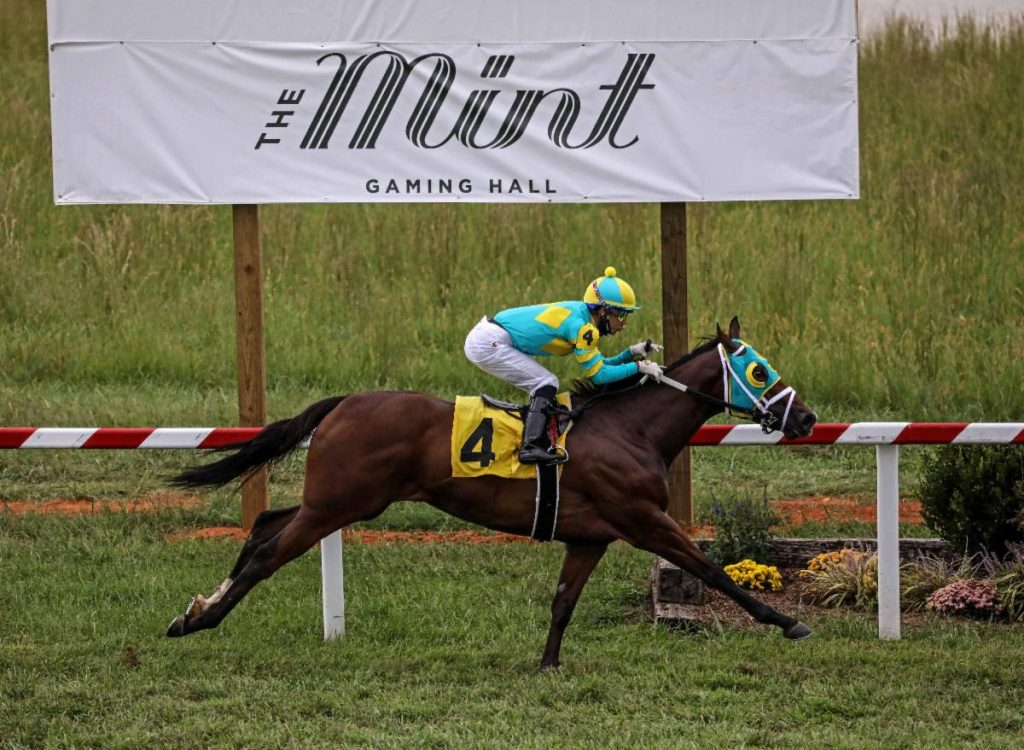 dash express horse betting